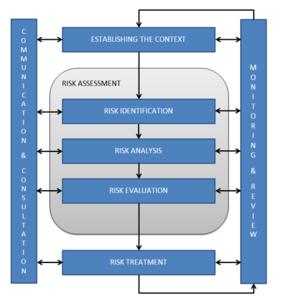 Guardians' Risk Management Process